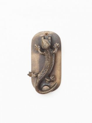 Chameleon Door Knocker