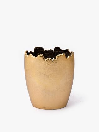Nordic Tooth Flower Vase - Golden